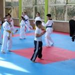 DF Collage Taekwondo Opendag2