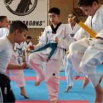 DF Collage Taekwondo Opendag3