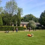 Sportdag Julianaschool.3