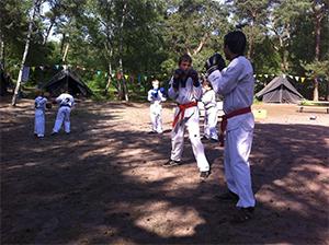 Taekwondo Kamp Kids 2014.8