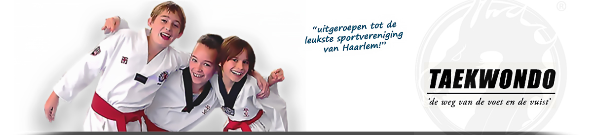 Slider Hwarangdragon Taekwondo.0